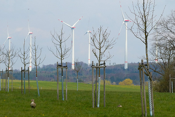 Windpark Hartenfelser Kopf, Rheinland-Pfalz