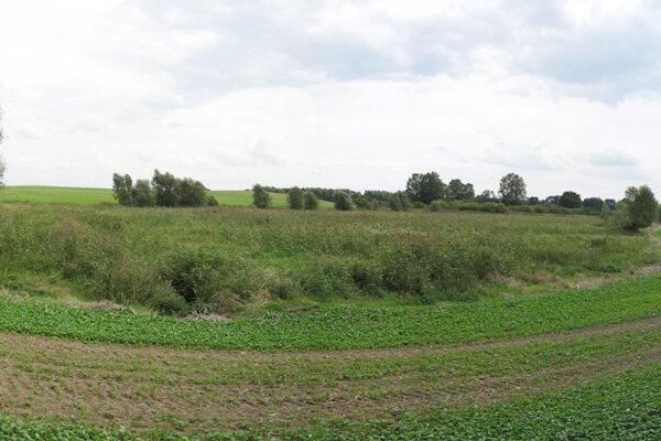 Windpark Grünfeld